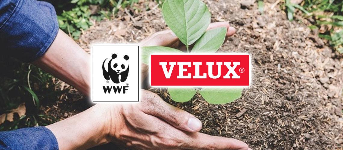 """Velux s'engage pour une """"neutralité carbone à vie"""" en partenariat avec le WWF"""